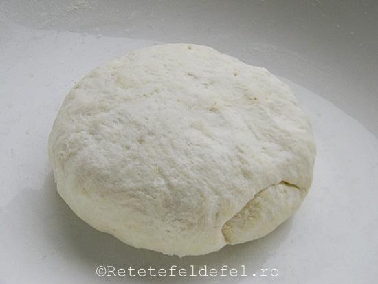 paine cu bicarbonat 022
