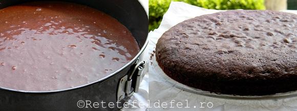 Tort musuroi de cartita 011-1