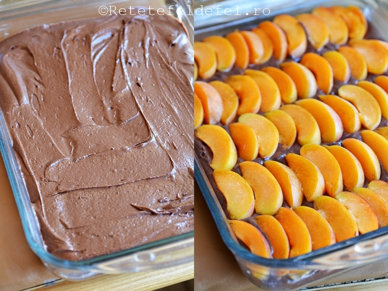 prajitura cu caise si cacao.jpg1